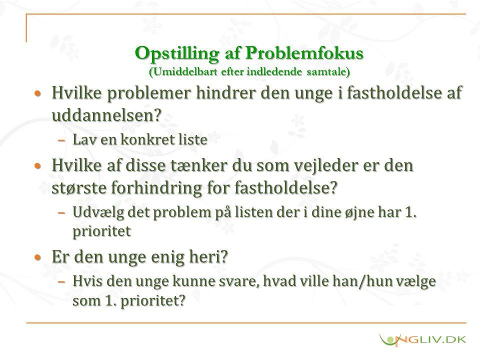 Opstilling af Problemfokus (Umiddelbart efter indledende samtale)