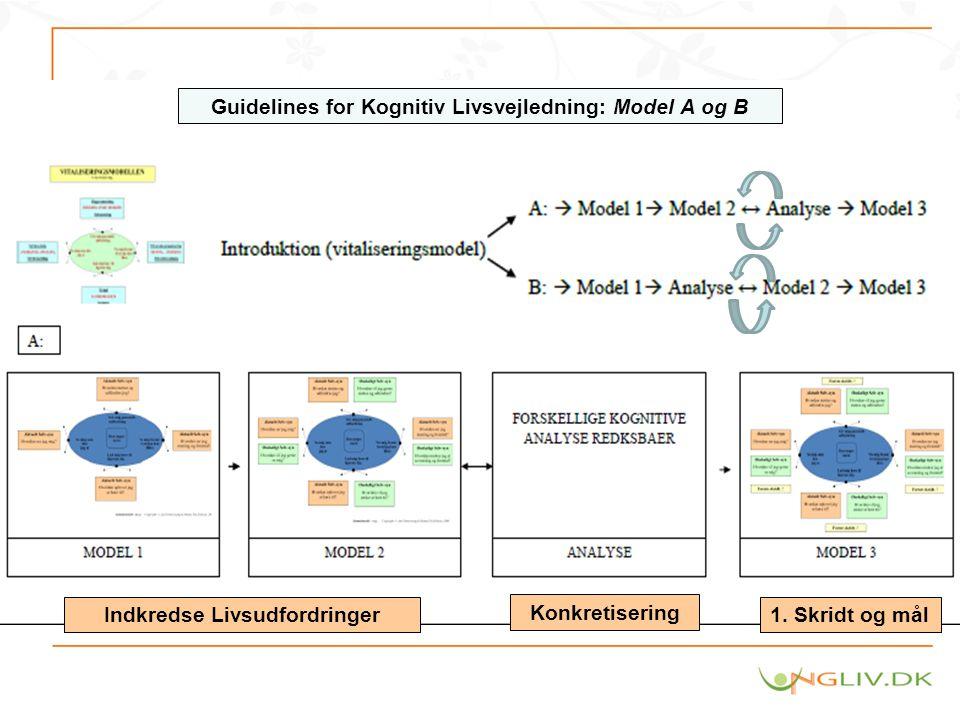 Guidelines for Kognitiv Livsvejledning: Model A og B