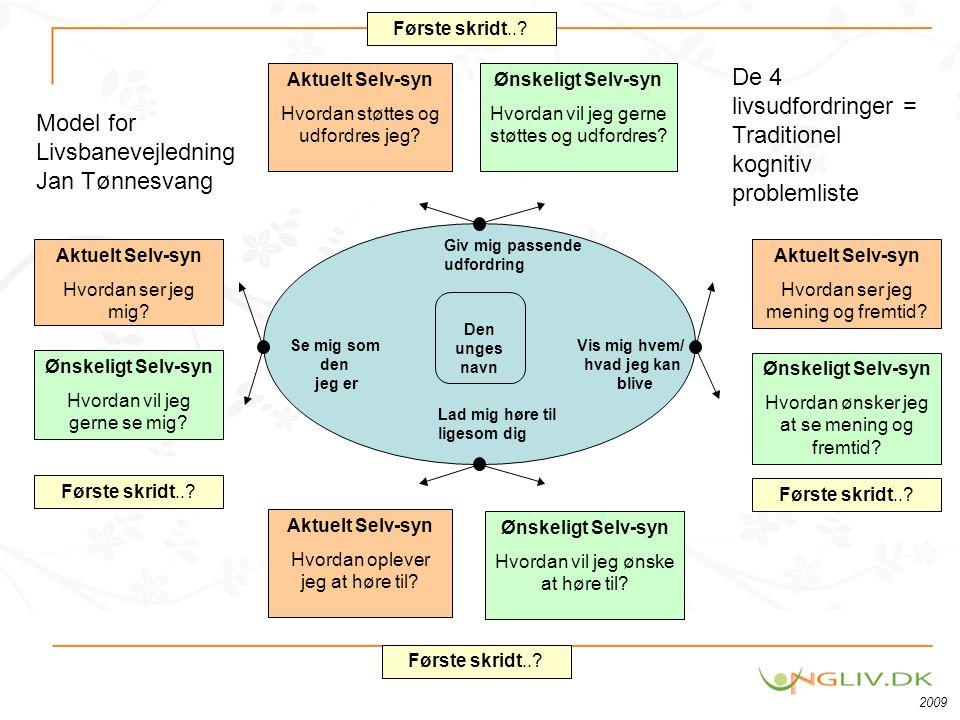 De 4 livsudfordringer = Traditionel kognitiv problemliste