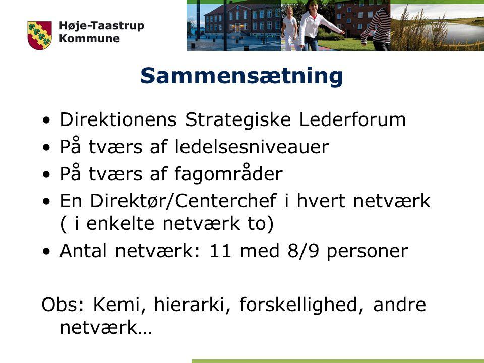 Sammensætning Direktionens Strategiske Lederforum