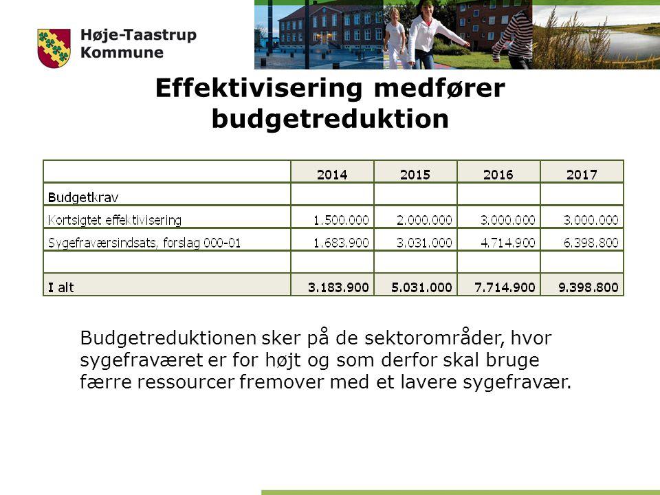 Effektivisering medfører budgetreduktion