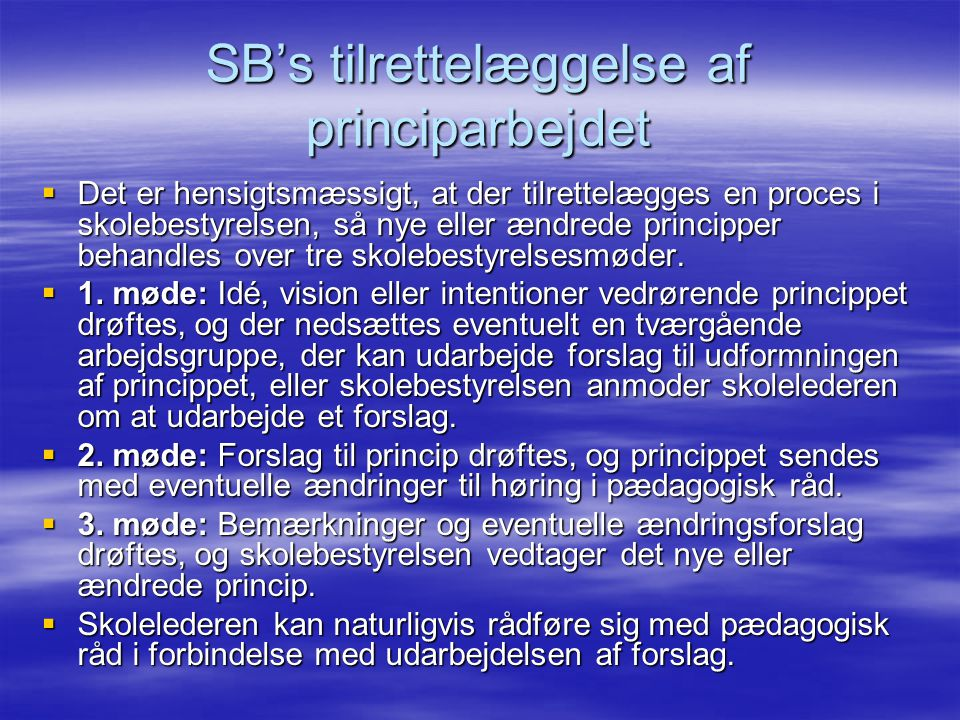 SB's tilrettelæggelse af principarbejdet