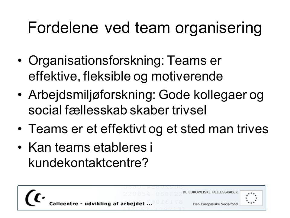 Fordelene ved team organisering
