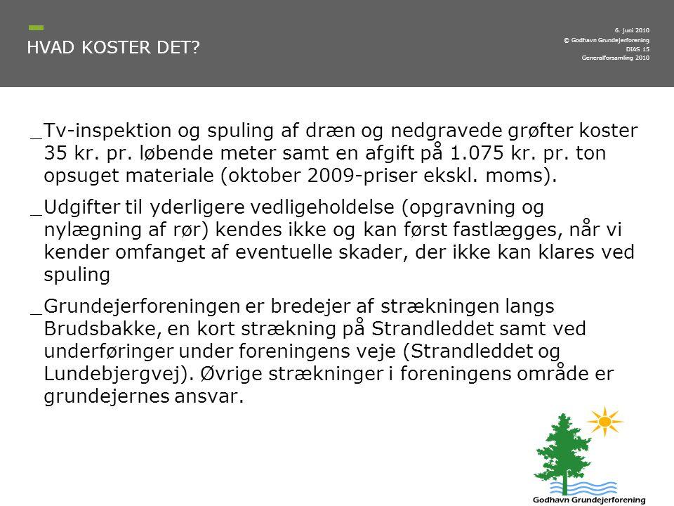 6. juni 2010 HVAD KOSTER DET Generalforsamling 2010.