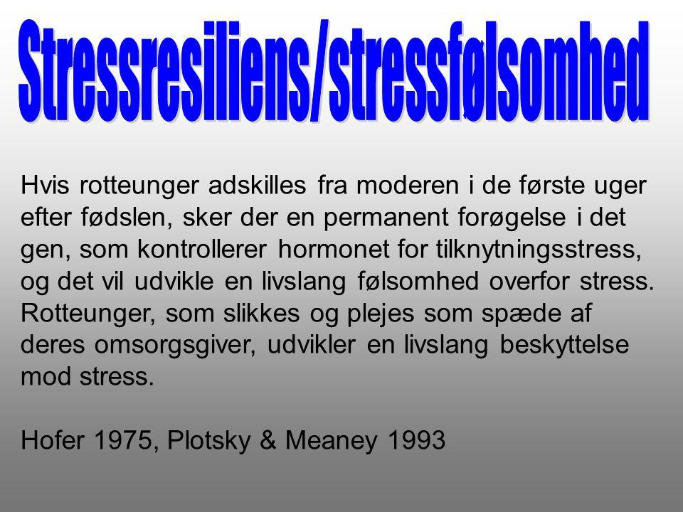 Stressresiliens/stressfølsomhed