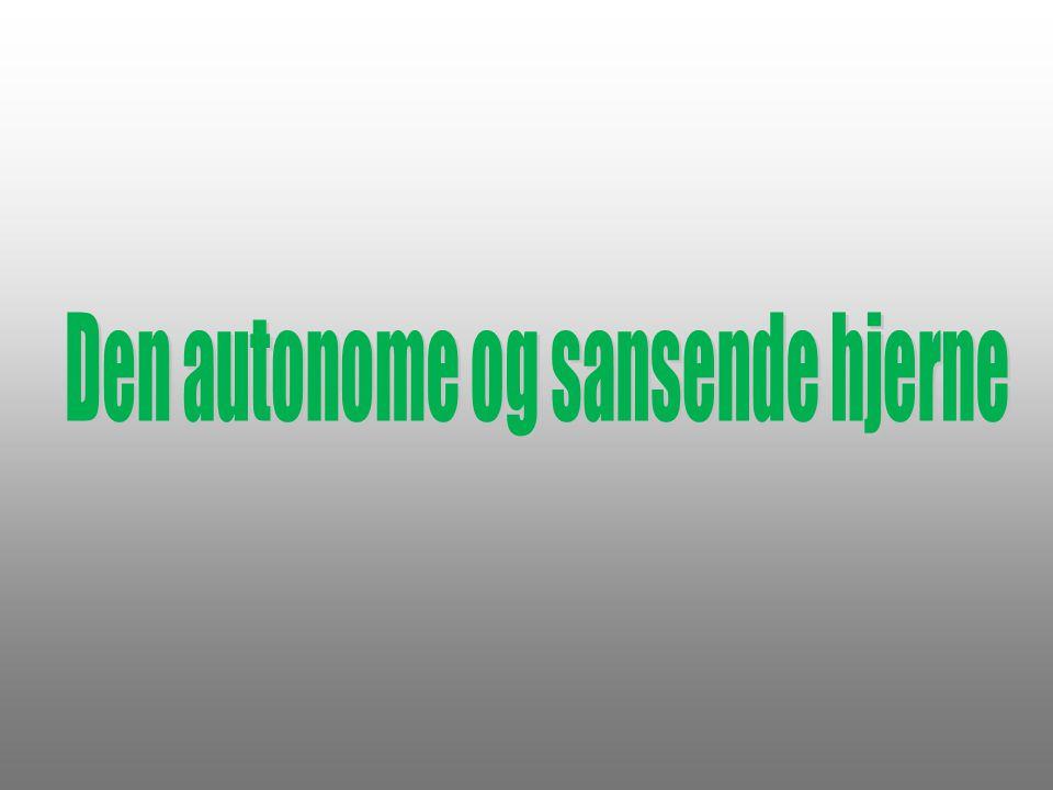 Den autonome og sansende hjerne
