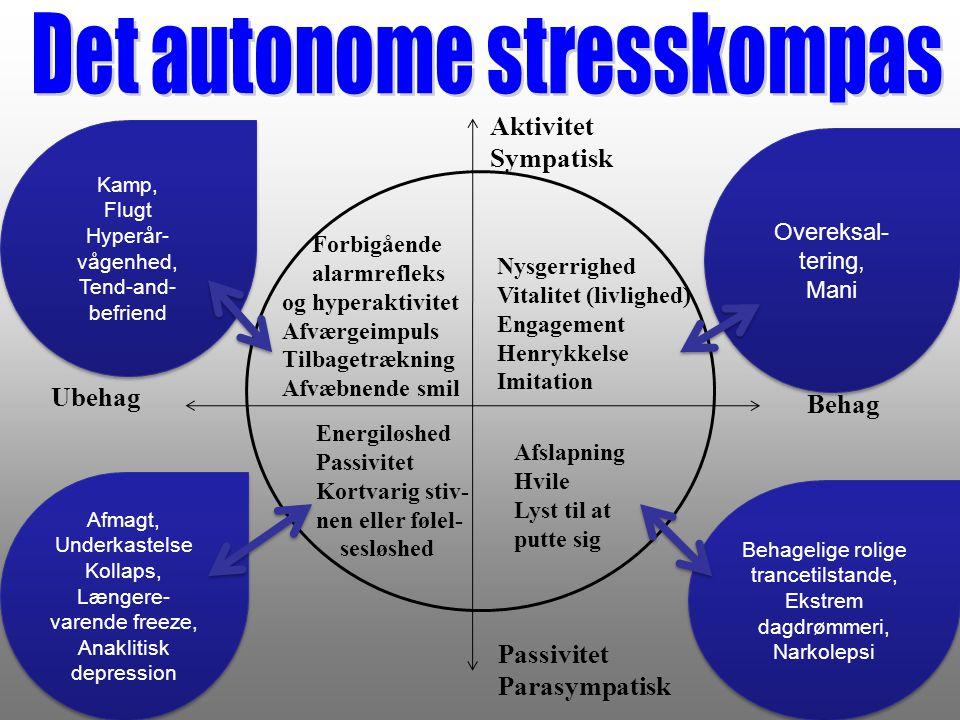Det autonome stresskompas