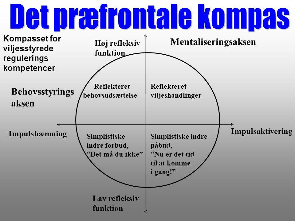 Det præfrontale kompas
