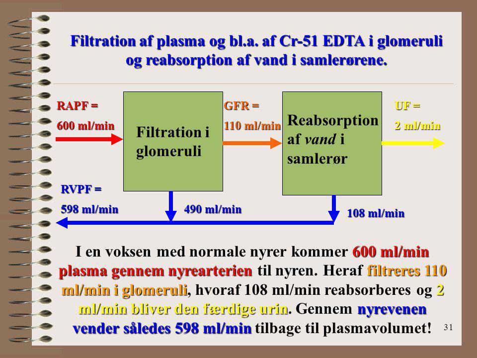 Reabsorption af vand i samlerør Filtration i glomeruli