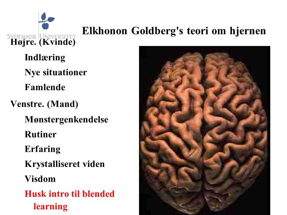 Elkhonon Goldberg s teori om hjernen