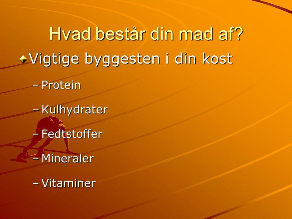 Hvad består din mad af Vigtige byggesten i din kost Protein