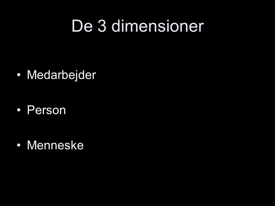 De 3 dimensioner Medarbejder Person Menneske