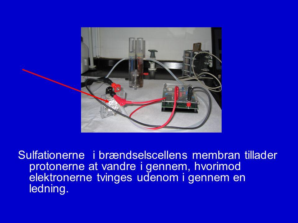 Sulfationerne i brændselscellens membran tillader protonerne at vandre i gennem, hvorimod elektronerne tvinges udenom i gennem en ledning.
