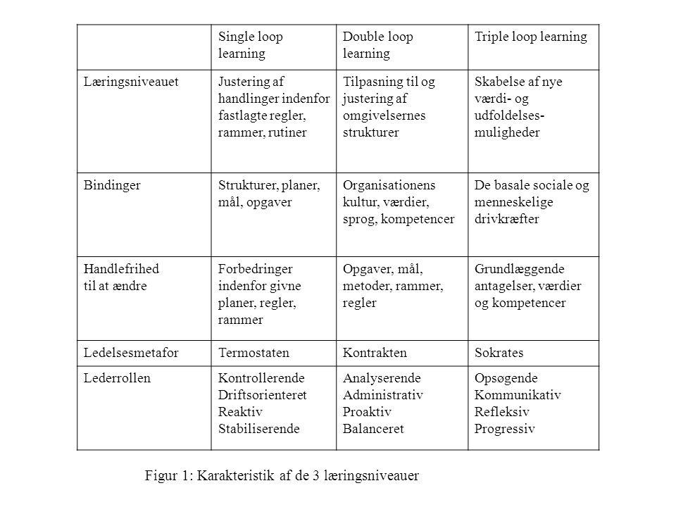 Figur 1: Karakteristik af de 3 læringsniveauer