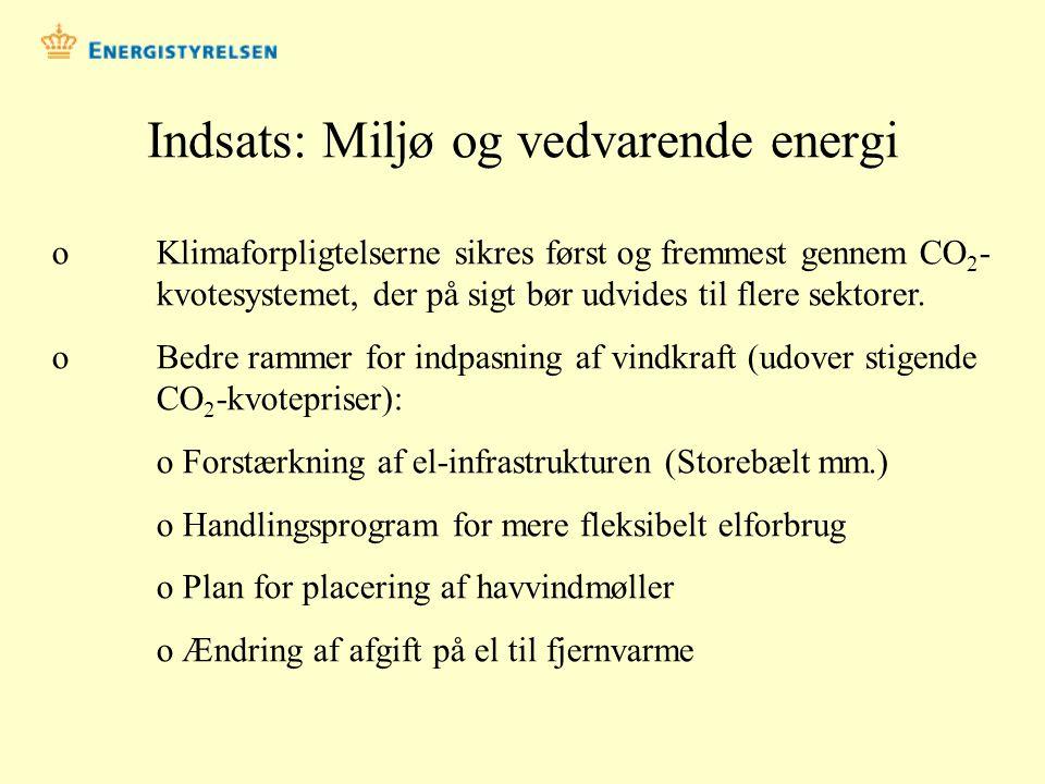 Indsats: Miljø og vedvarende energi