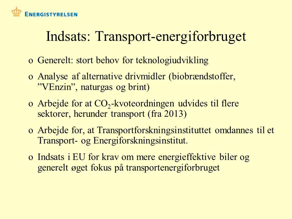 Indsats: Transport-energiforbruget
