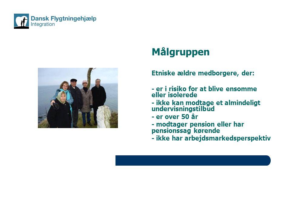 Målgruppen Etniske ældre medborgere, der: