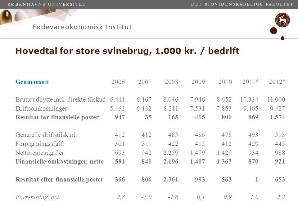 Hovedtal for store svinebrug, 1.000 kr. / bedrift