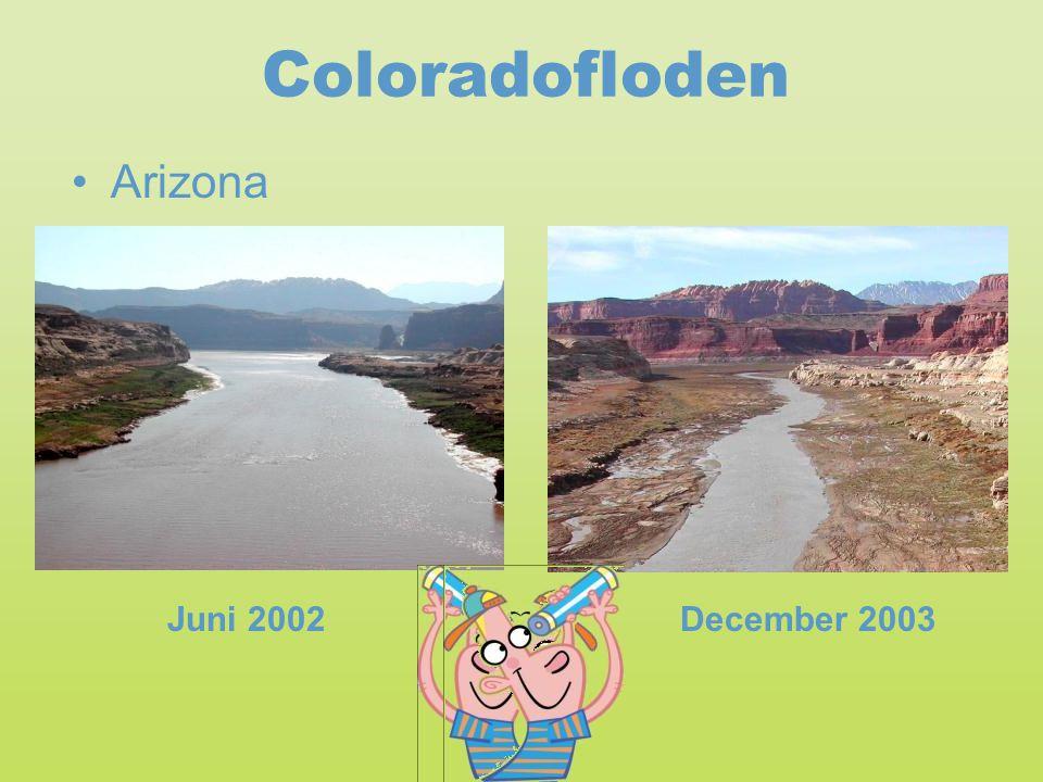 Coloradofloden Arizona Juni 2002 December 2003