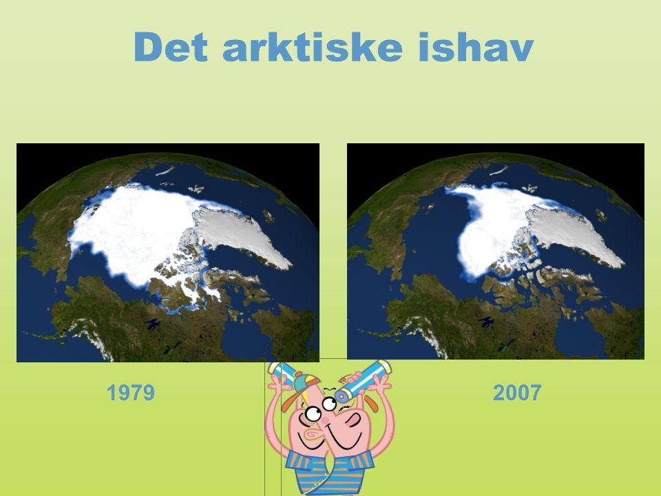 Det arktiske ishav Kilde: http://svs.gsfc.nasa.gov/vis/a000000/a003400/a003464/index.html. Læs mere (lærer):