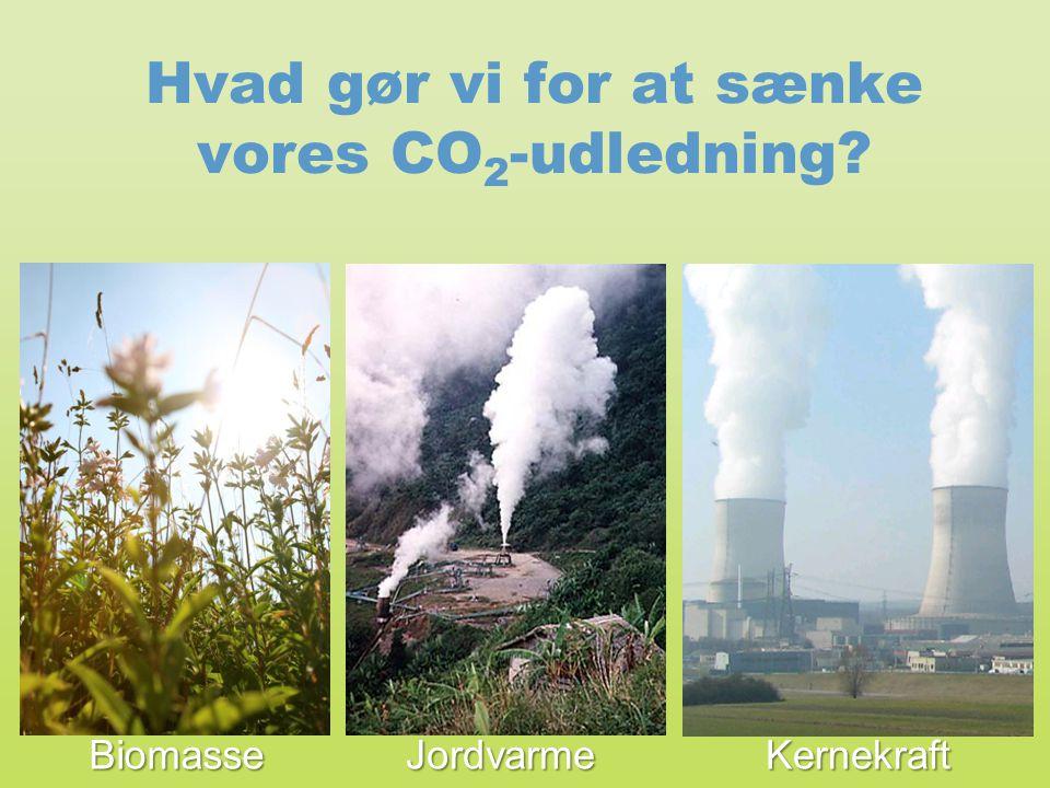 Hvad gør vi for at sænke vores CO2-udledning