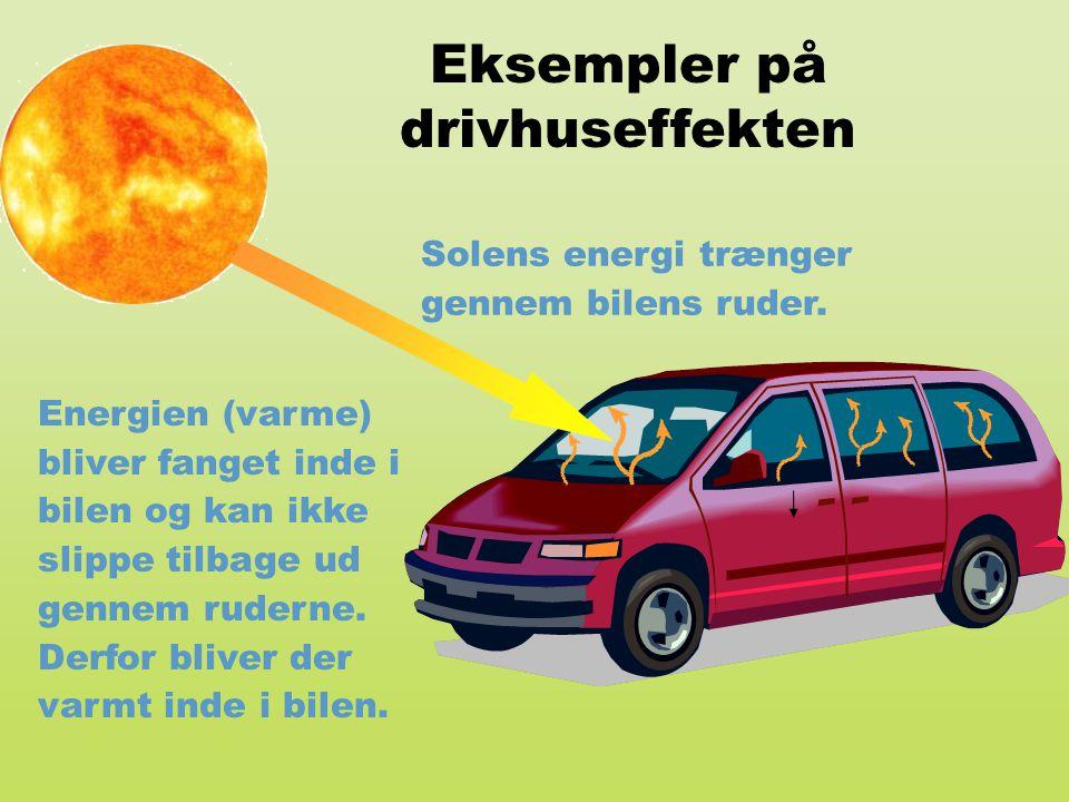 Eksempler på drivhuseffekten