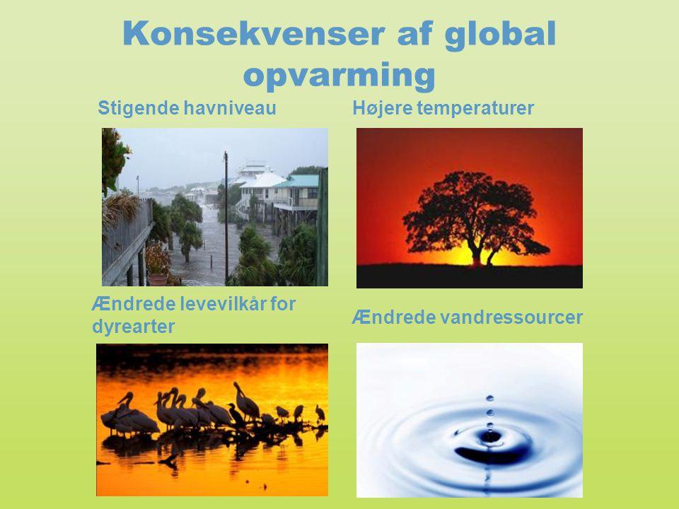 Konsekvenser af global opvarming