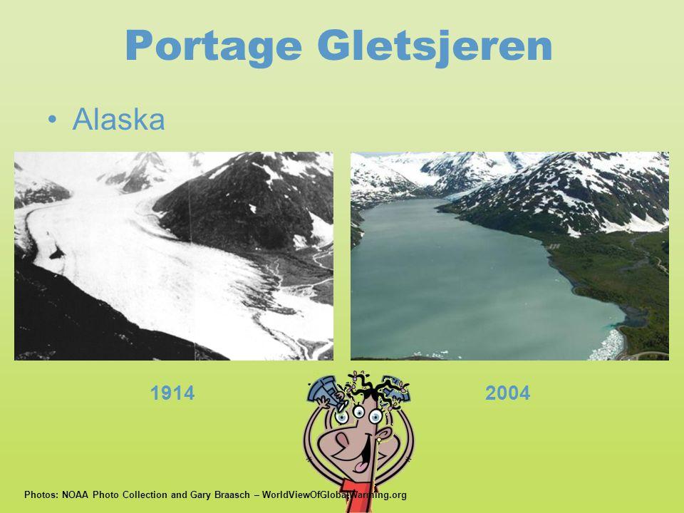 Portage Gletsjeren Alaska 1914 2004