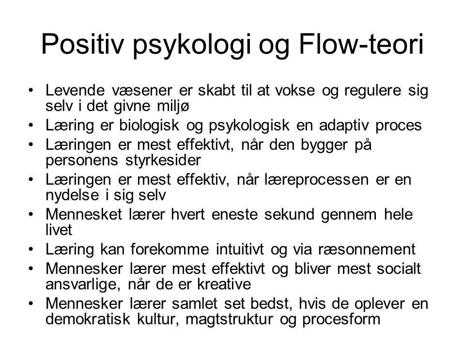 Positiv psykologi og Flow-teori