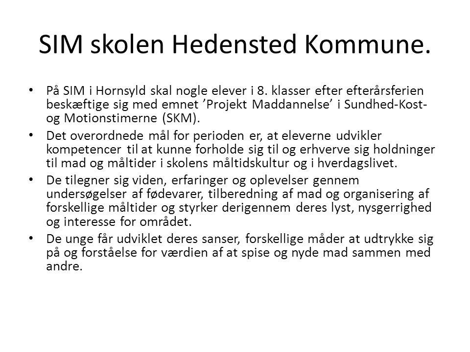 SIM skolen Hedensted Kommune.