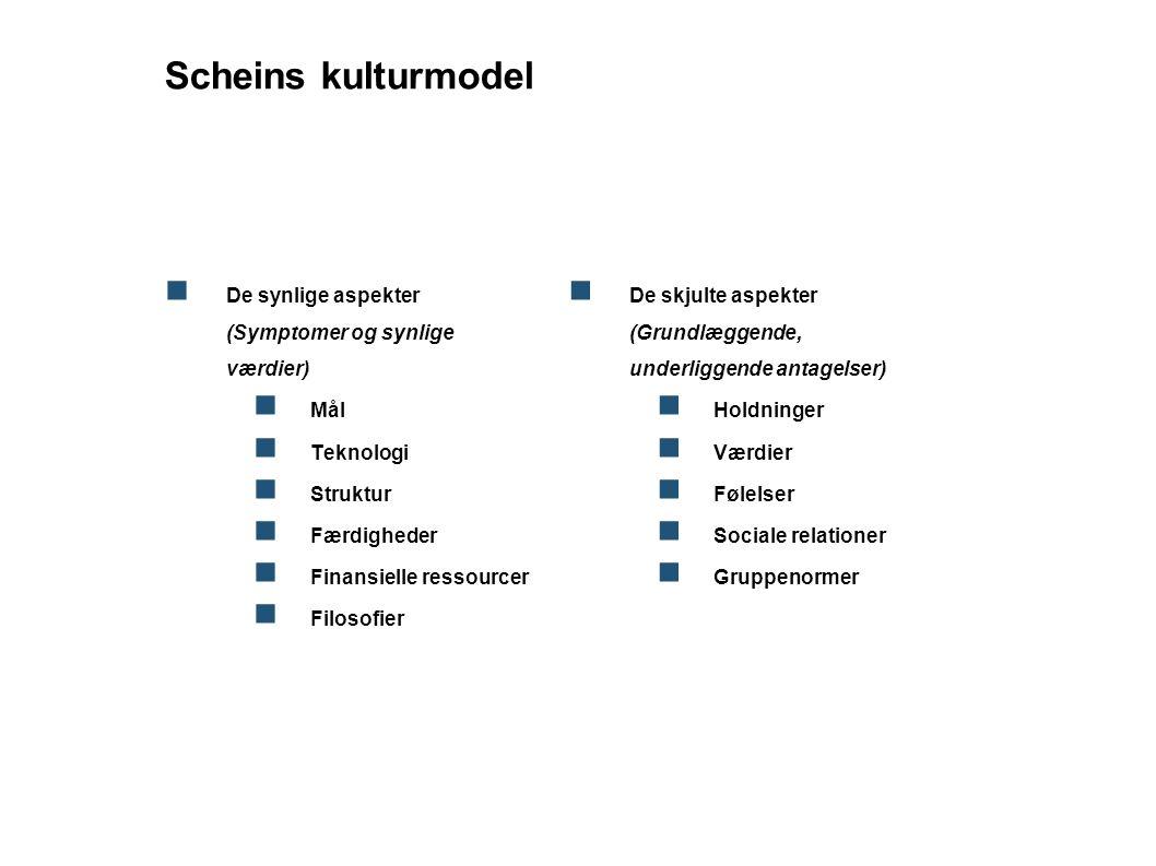 Scheins kulturmodel De synlige aspekter (Symptomer og synlige værdier)