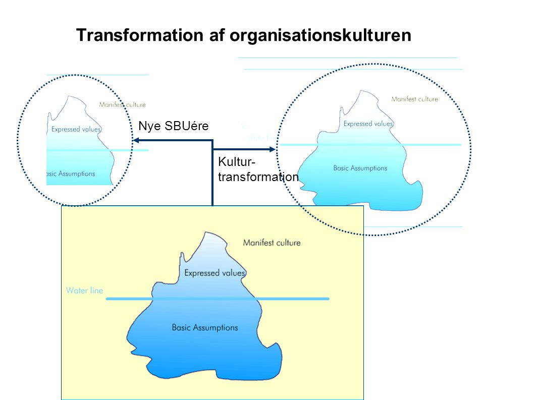 Transformation af organisationskulturen