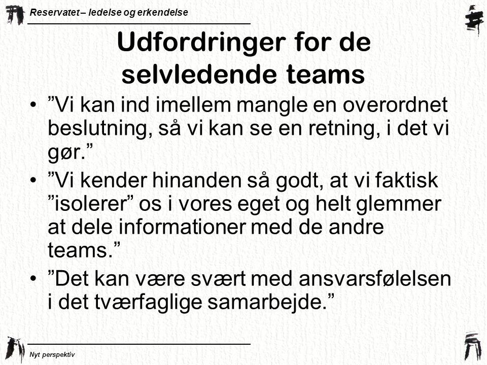 Udfordringer for de selvledende teams
