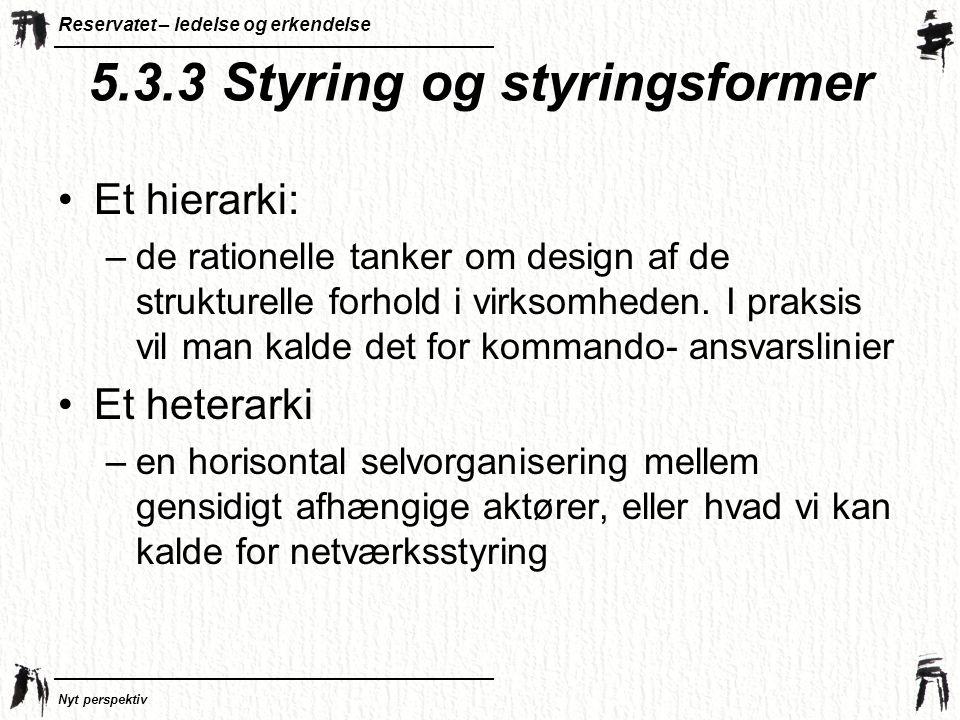 5.3.3 Styring og styringsformer