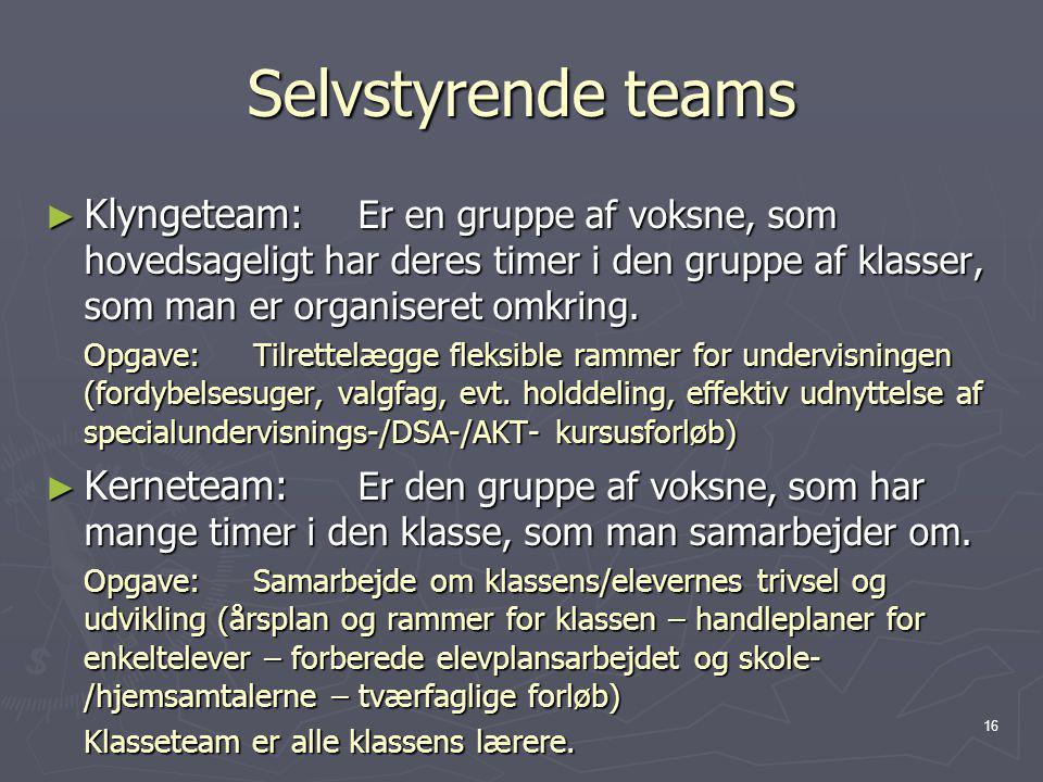 Selvstyrende teams Klyngeteam: Er en gruppe af voksne, som hovedsageligt har deres timer i den gruppe af klasser, som man er organiseret omkring.