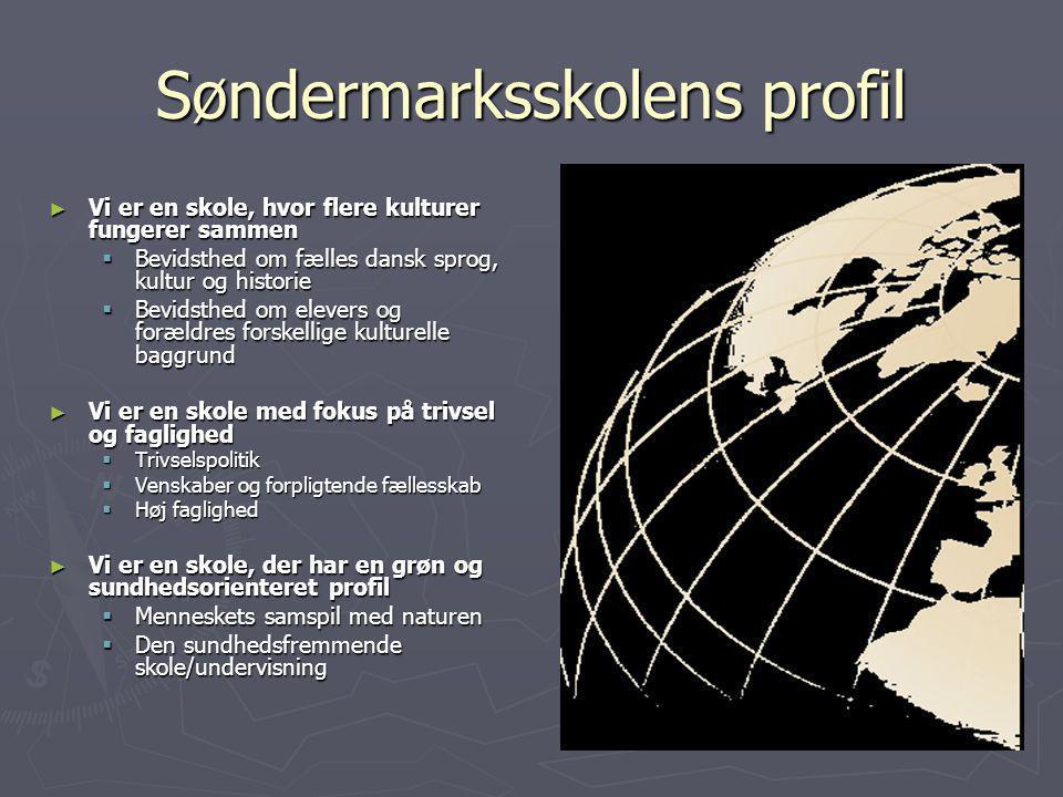 Søndermarksskolens profil