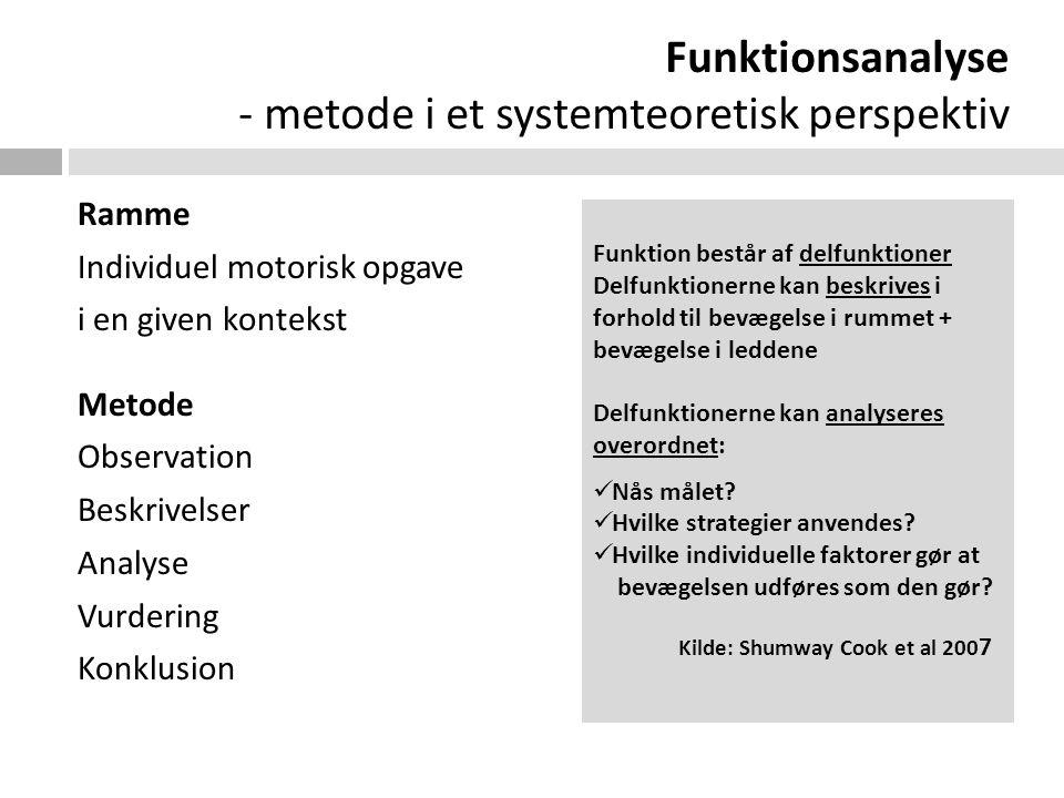 Funktionsanalyse - metode i et systemteoretisk perspektiv