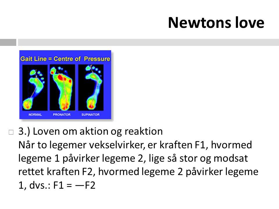 Newtons love