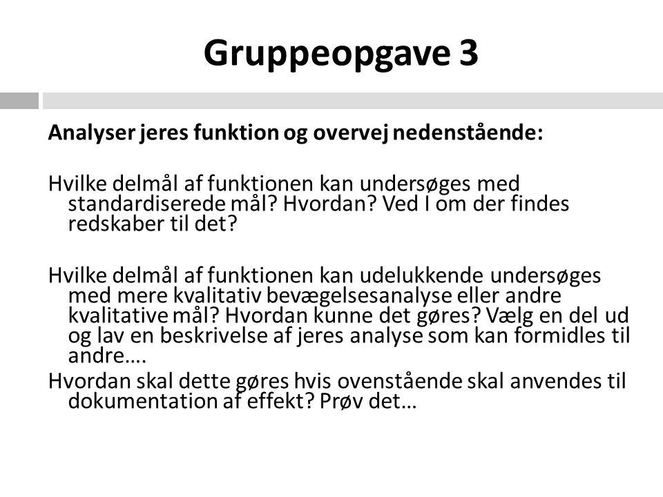 Gruppeopgave 3