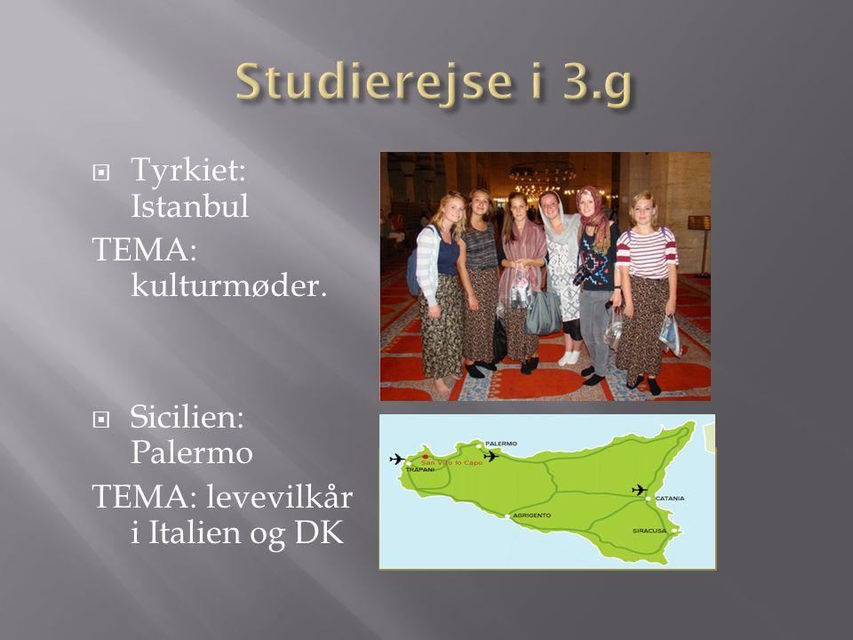 Studierejse i 3.g Tyrkiet: Istanbul TEMA: kulturmøder.
