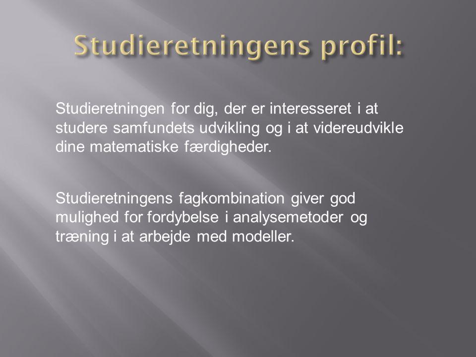 Studieretningens profil: