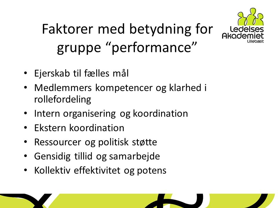 Faktorer med betydning for gruppe performance
