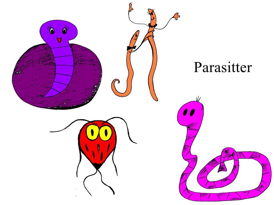 Parasitter