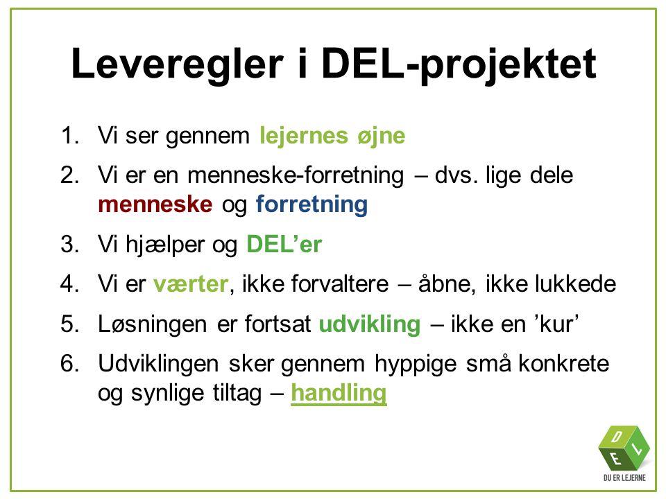 Leveregler i DEL-projektet
