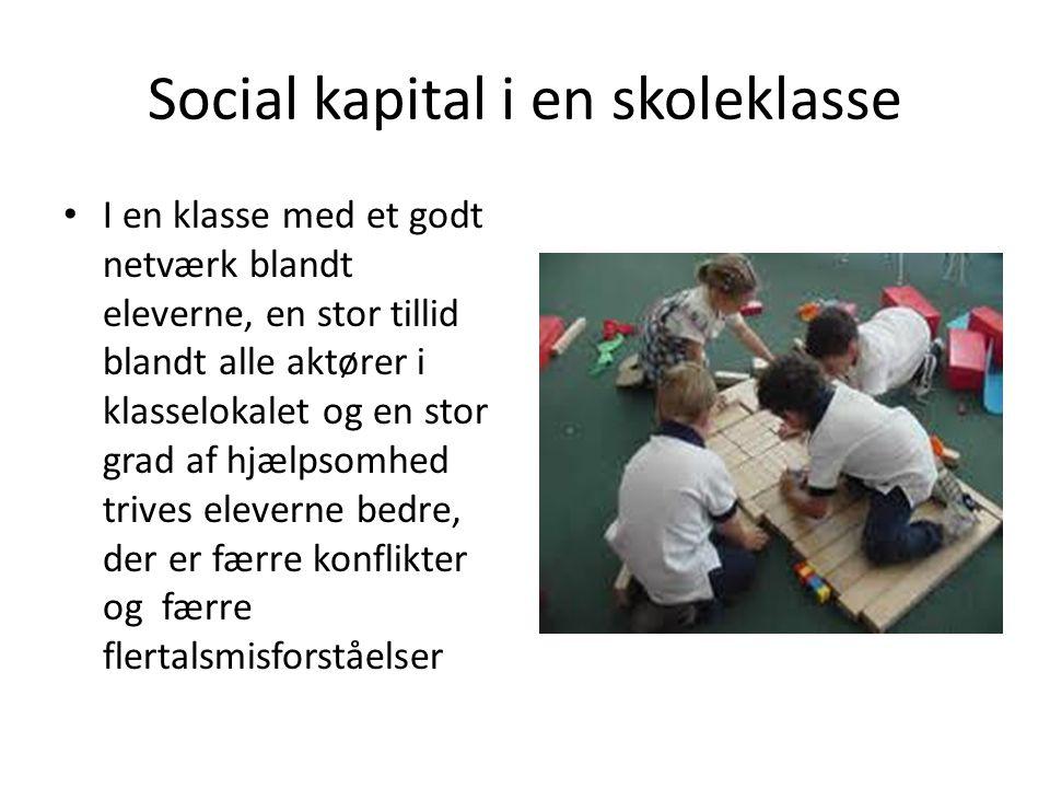 Social kapital i en skoleklasse