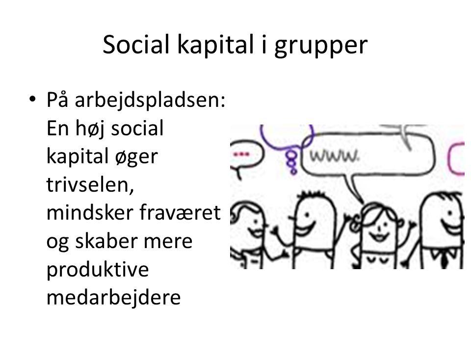 Social kapital i grupper