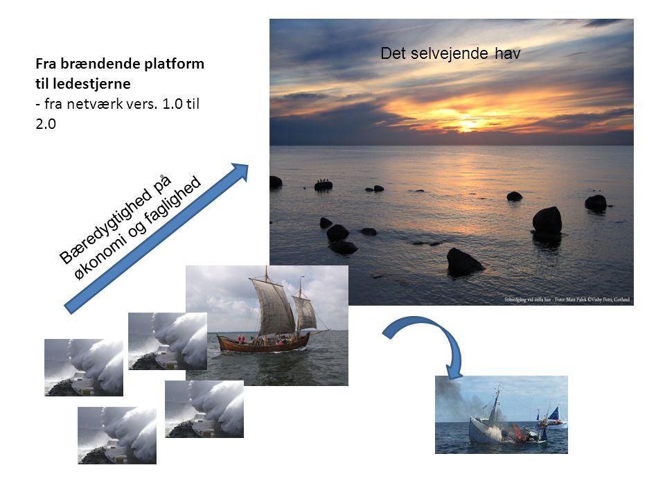 Fra brændende platform til ledestjerne - fra netværk vers. 1.0 til 2.0