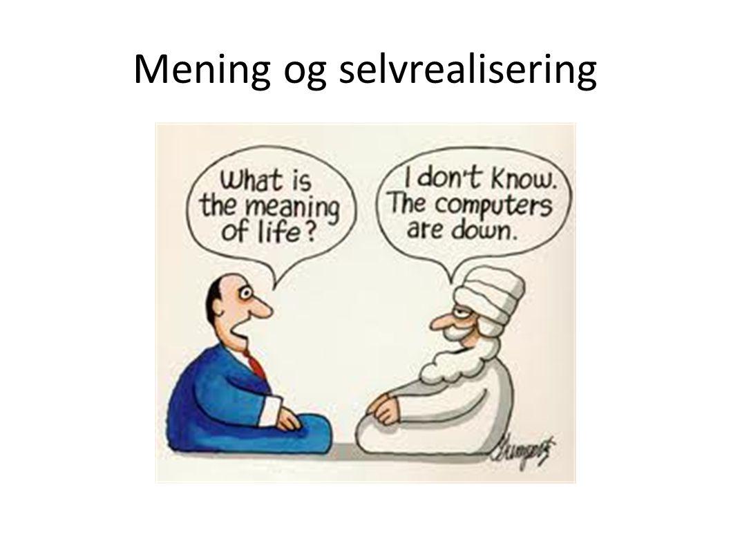 Mening og selvrealisering