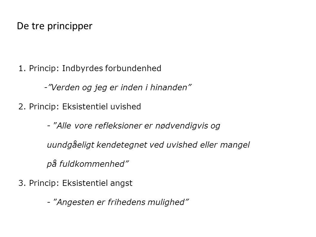 De tre principper 1. Princip: Indbyrdes forbundenhed