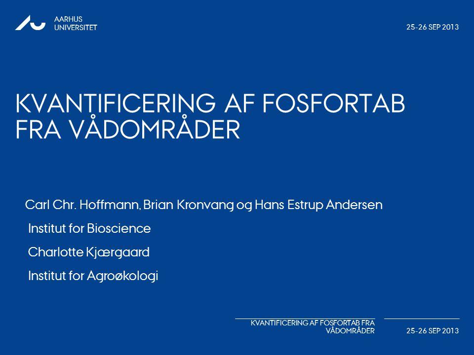Kvantificering af fosfortab fra vådområder